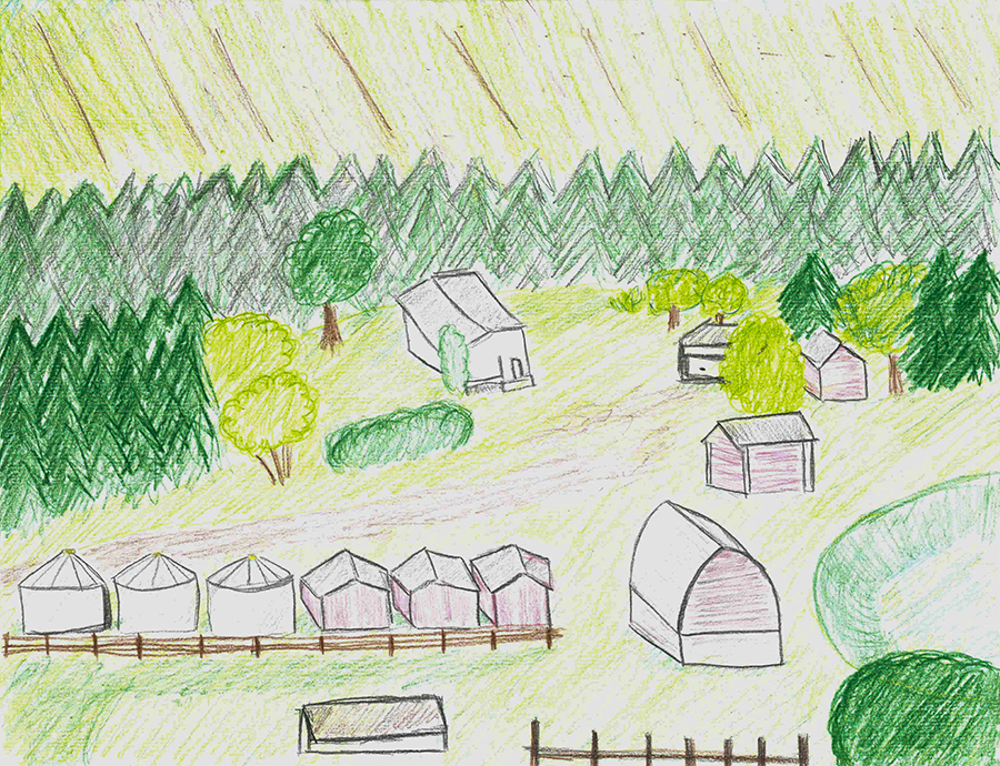 I drew this based on my memory. It's an aerial view of the farm. It's mostly to scale, but the yard is bigger than pictured - there's more bins and grass. There are many pine trees that surround the yard. Multiple grain bins and red sheds surround the outskirts of the yard, and are beside the barn. There's a field behind the line of pine trees that's been worked.